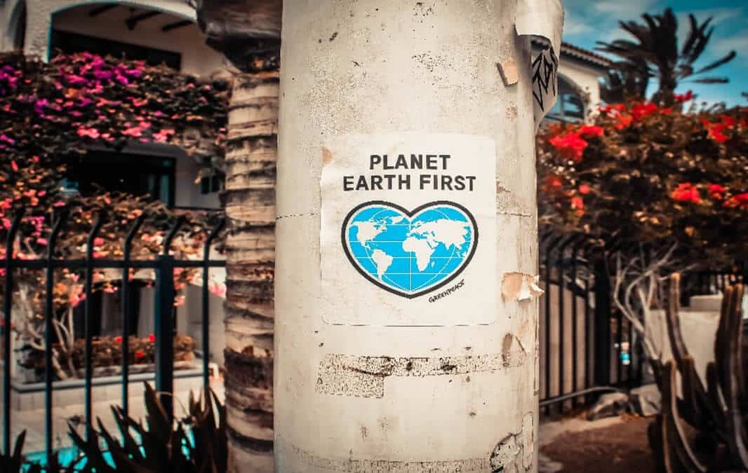 sign glued to a post saying planet earth first