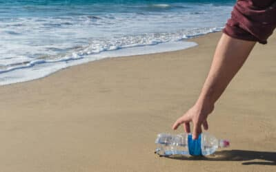 Join Our Virtual Beach Cleanup Events on July 25!